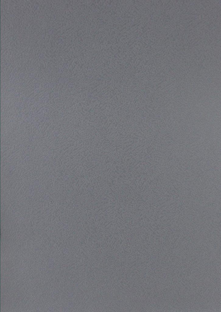 MERIN 074